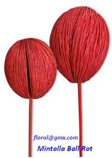 Mintolla Ball Colour