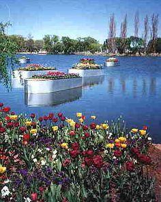 Floriade, Canberra