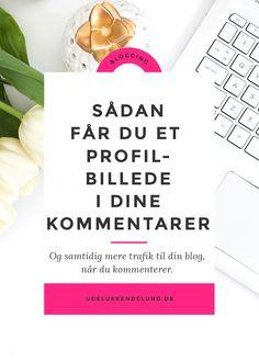 Profilbillede | Kommentarer | Blogging | Blogguide | Blogtips | Gravatar | Wordpress