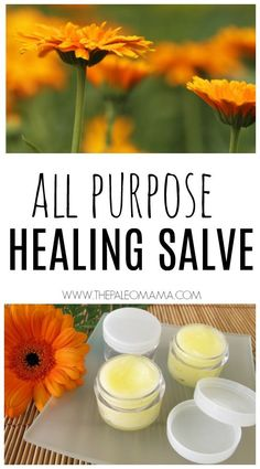 All Purpose Healing Salve - The Paleo Mama