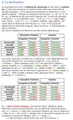 Cours de Latin 4e - Les noms de la troisième déclinaison - Maxicours.com