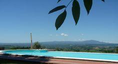 Vista Sull'oliveto in Poggiolo, Umbria