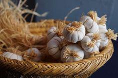 Realistic Looking Fabric Garlic DIY - Fall Crafts 2016