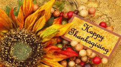 undefined Thanksgiving Free Desktop Wallpapers (62 Wallpapers) | Adorable Wallpapers