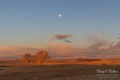 As the sunrise illuminates the landscape, the full moon sets in the west. (© Tony's Takes)