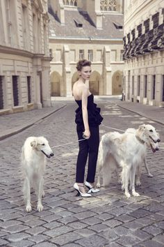 2b8e0ce0 Sally Matthews - Visual Story: Best In Show - Fashion & Beauty Director Dog  Rescuers