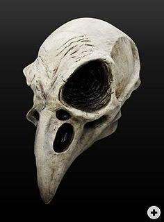 http://www.maskworld.fr/fr/produits/masques/masques-en-latex/zombies-squelettes-et-morts-vivants-masques/tete-de-corbeau--111740