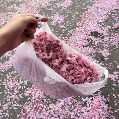 *aggressively throwing flowers petals while you walk*