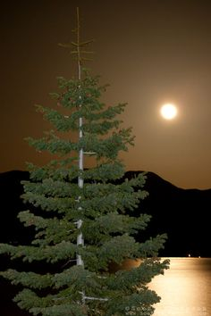 """Full Moon Over Lake Tahoe 9"" - This full moon was photographed rising over Heavenly Ski Resort at Lake Tahoe."