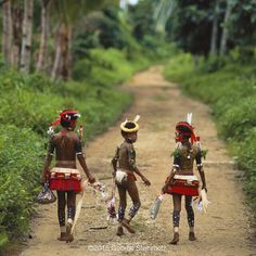 Photograph by George Steinmetz @geosteinmetz / @thephotosociety Children on their way to a once-a-month traditional day at school on Kiriwina, in the #TrobriandIslands, Papua New Guinea. The islands became known to social anthropologists through the now-classic work of Malinowski, Argonauts of the Western Pacific.