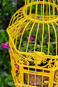 Convert a bird cage into a planter for a fun and whimsical accent in your garden
