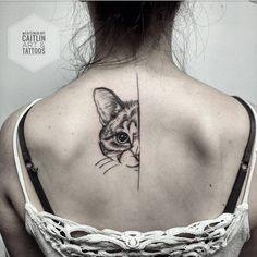 Kitty named marshmallow :)