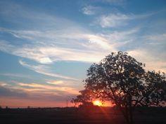 """""""Entre uma estrela e um vaga-lume o sol se põe.""""  Alice Ruiz  #sunset #por #do #sol #paisagem"""