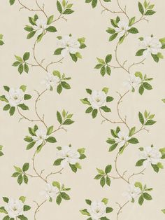 Sweet Bay (DPFPSW202) - Sanderson Fabrics - A magnolia tree in full bloom with fabulous blossoms on a gently undulating stem has been printed to capture the rich watercolour tonality of botanical paintings. Shown in the Ivory / Green colourway. Please request sample for true colour match.