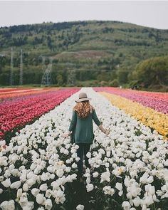 Strolling over a field of flowers. Scenery Photography, Tumblr Photography, Creative Photography, Spring Aesthetic, Tulip Festival, Plants Are Friends, Tulip Fields, Spring Photos, Flower Farm