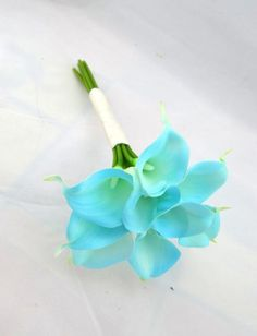 Weddbook is a content discovery engine mostly specialized on wedding concept. You can collect images, videos or articles you discovered  organize them, add your own ideas to your collections and share with other people | This elegant bouquet is created with real touch Tiffany Blue Calla Lilies.  This Bouquet is ready to ship as shown or customize it for your colors -