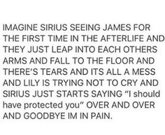 "Imagine Sirius seeing James for the first time in the afterlife and they just leap into each others arms and fall to the floor and there is tears and its all a mess and Lily is trying not to cry and Sirius just starts saying !I should have protected you"" over and over and goodbye im in pain."