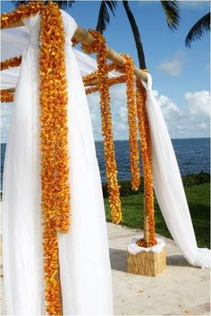 Bamboo arch draped in fabric and orange flowers.  Venue: Grove Isle Hotel & Spa, Coconut Grove, FL.  Flowers by Lush Celebrations. Love the orange!!