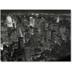 Trademark Fine Art Night Skyline Canvas Art by Chris Bliss, Size: 24 x 32, Multicolor