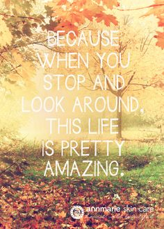 """Because when you stop and look around, this life is pretty amazing"".   #quote #skincare #honestwildbeautiful"
