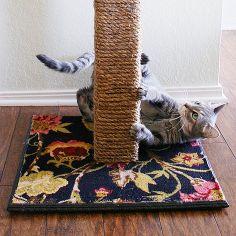 salvar o seu mobiliário diy gato arranhando post que dura, ofícios, animais de estimação animais