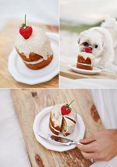 Doggie birthday cake recipe to send to Mom for Bella. :)