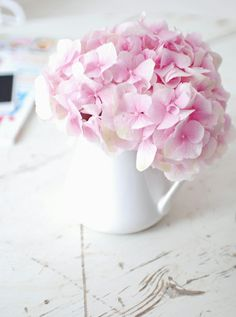 Plant Now: Hydrangeas — Flaming Petal Blog