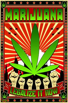 Legalization Marijuana Blog - - Dispensaries - Legal Marijuana Dispensary and Cannabis Clubs at THCFinder