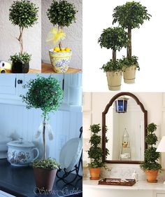 INSPIRATION | TOPIARIES :: More DIY Topiary Ideas :: I'm making some so I want to remember what look I want! :] | #topiaries #topiary