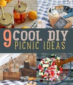 9 Best DIY Picnic Food Ideas & Crafts | 9 Totally Cool DIY Picnic Ideas | diyready.com