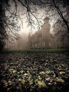 Abandoned castle in poland Abandoned Mansions, Abandoned Buildings, Abandoned Places, Beautiful Castles, Beautiful Places, Photo Chateau, Haunted Places, Spooky Places, Images