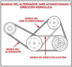 Bandas del alternador, aire acondicionado y dirección asistida/hidráulica