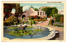 Antique postcard - the fountain at Mission San Juan Capistrano, CA - I have a photo of my daughters a few years ago leaning over the edge of this one many decades later, also pinned