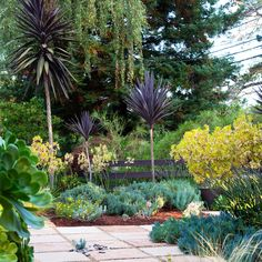Two landscape designers use some of the same great ideas, yet each garden ends up with its own distinct look