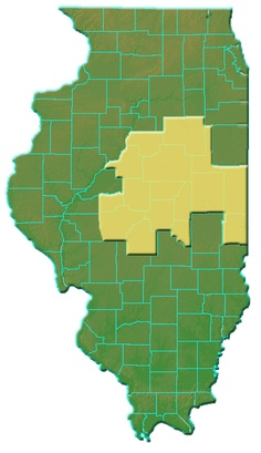 Eighth Judicial Circuit Court Map  Yellow highlights the counties Lincoln traveled as a lawyer