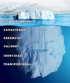 niveles neurologicos-coaching