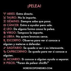 Y a Piscis le dan un pooh-tazo Zodiac Signs Horoscope, My Zodiac Sign, Signes Zodiac, Signo Libra, Zodiac Society, Cancer, Virgo, Aquarius, Words