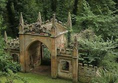 Gates to the forrest world