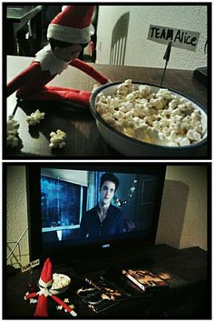 """""""Elf on the Shelf"""" Jabby is our Elf we adopted ..he got into my Twilight collection lastnight and is hooked just like me !!!!"""