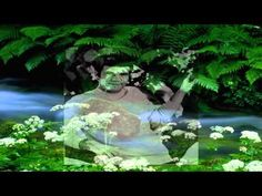 ▶ Bobby Vee - You Belong To Me - YouTube
