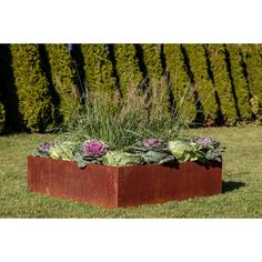 Metallic Series 4 ft x 4 ft Corten Steel Raised Garden Metal Planter Boxes, Corten Steel Planters, Front Yard Decor, Front Yard Landscaping, Landscaping Ideas, Front Porch, Desert Backyard, Lawn Edging, Steel Garden Edging