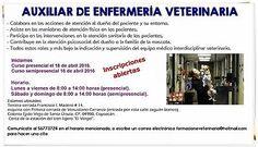 Auxiliar de enfermería veterinaria  #Auxiliar, #Enfermeria, #Veterinaria