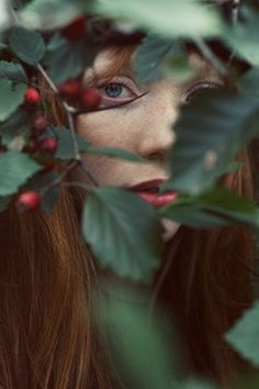 Colours - blue eyes with red berries/green leaves/ginger hair