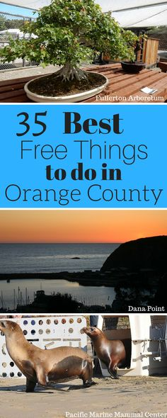 With so many of the best free things to do in Orange County, you have no excuse for just sitting your way through summer.