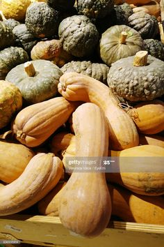 Stock Photo : Full Frame Shot Of Squashes For Sale At Market Squashes, Shots, Pumpkin, Stock Photos, York, Times, Frame, Pumpkins, Picture Frame