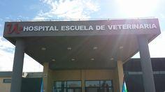 Ayer, se inauguró luego de una años de haber comenzado la obra, el hospital escuela de la carrera de Veterinaria de la Universidad Nacional de Río Negro, a la que pertenezco. A todos los que hemos…
