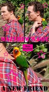 Celebs with pets  Parrots