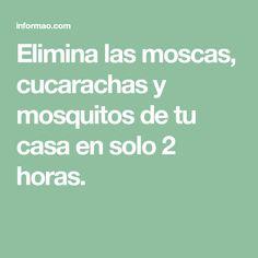 Elimina las moscas, cucarachas y mosquitos de tu casa en solo 2 horas.