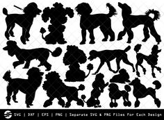 Animal Silhouette, Silhouette Art, Silhouette Studio, Apricot Standard Poodle, Purchase History, Space Crafts, Vinyl Designs, Svg Cuts, Cutting Files