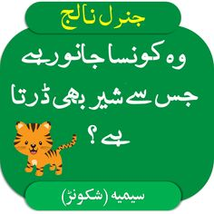 General Knowledge Questions and Answers in Urdu Question And Answer, This Or That Questions, Knowledge Quiz, Number 15, English Course, Mathematics, Science, Diy Crafts, Learning